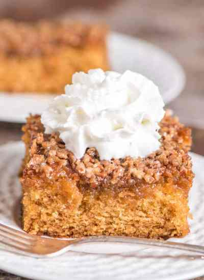 Amish Cake {Easy 9x13 Cake Recipe with Butter & Nut Topping}