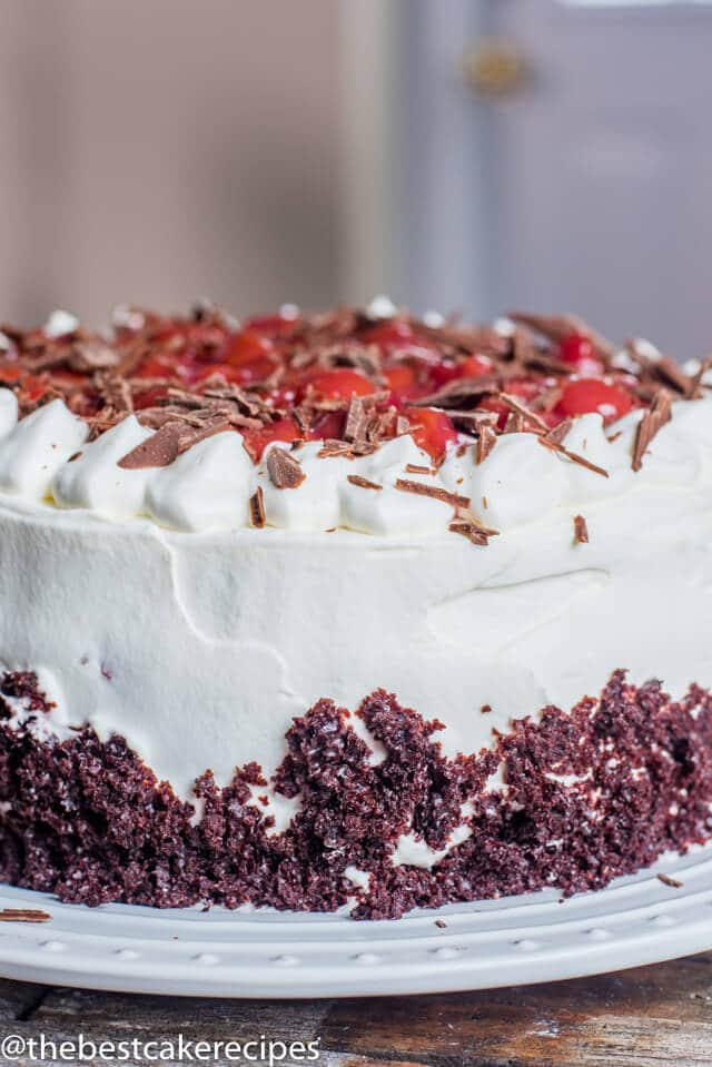 black forest cake with pretty decorations side view