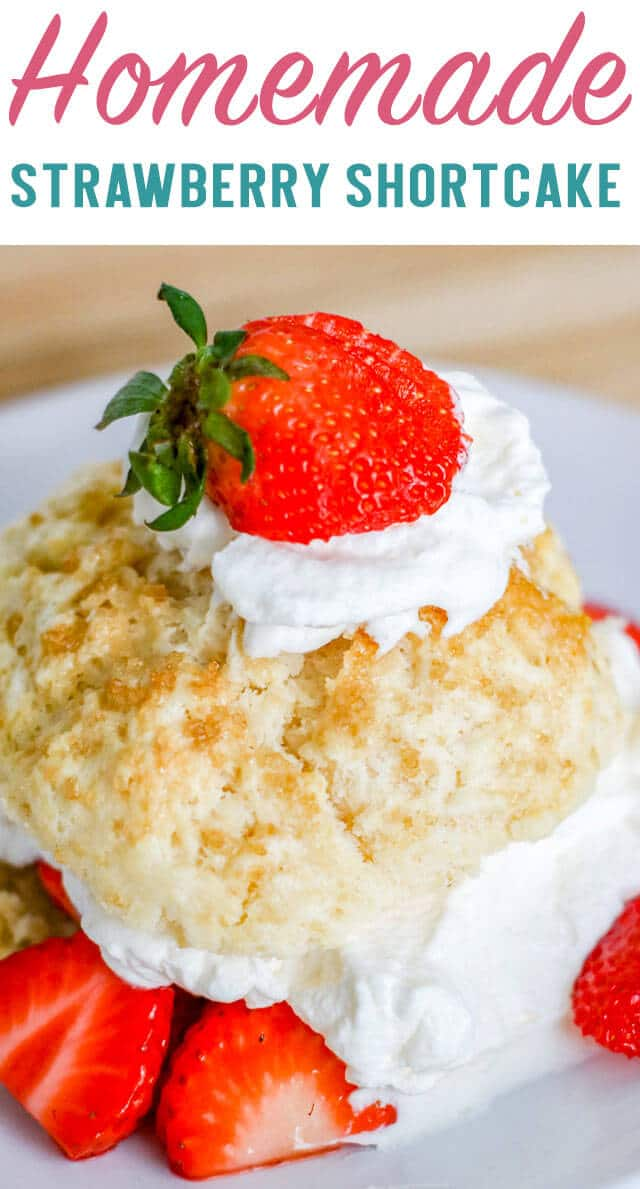 Everything you need to know about how to make the most delicious homemade strawberry shortcakes. This easy dessert is perfect for summer picnics! #strawberry #shortcake #homemade #summer via @thebestcakerecipes