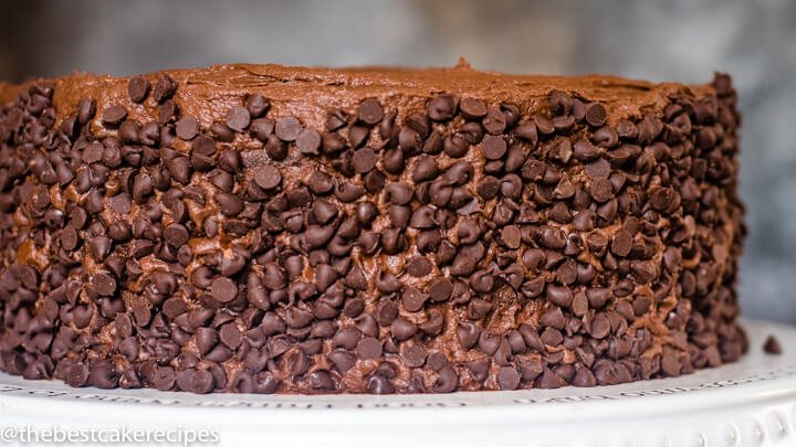 2 layer chocolate cake with chocolate chips on outside
