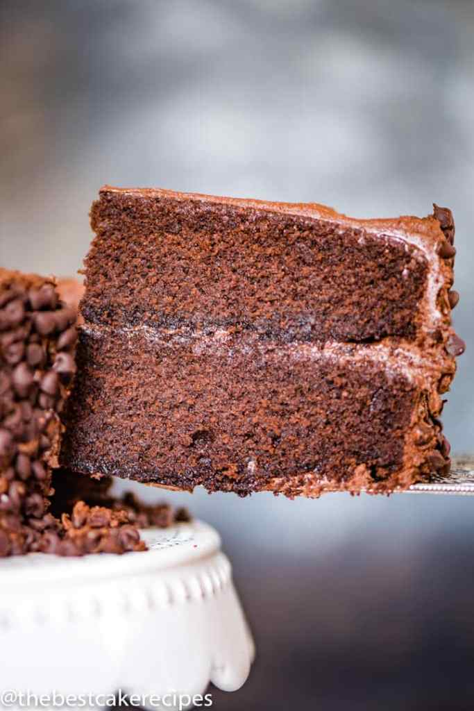 Barley Flour Chocolate Cake on a spatula