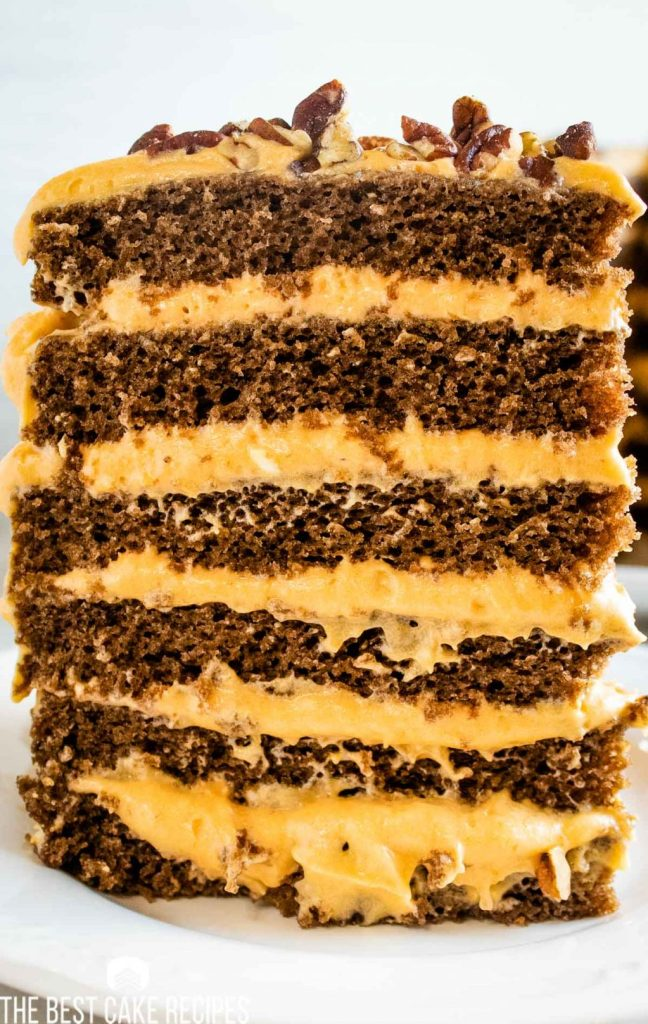 tall layered slice of Pumpkin Chocolate Torte with cream cheese filling