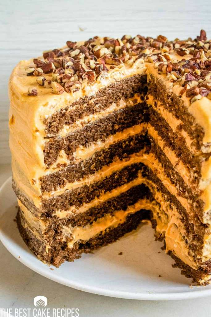 layered Pumpkin Chocolate Torte with a quarter of the cake gone