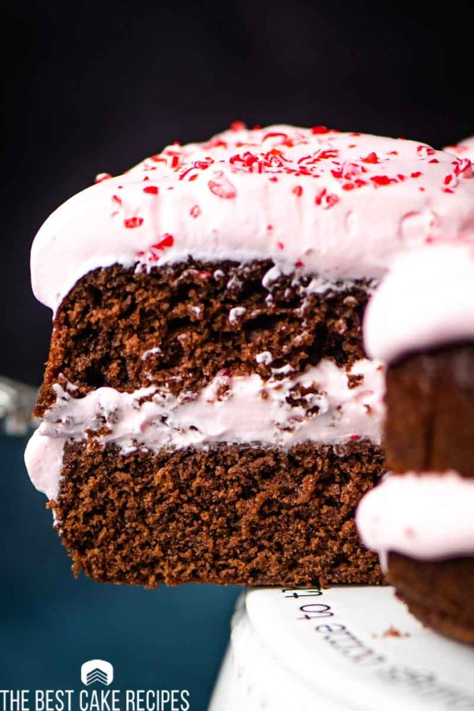 two layer chocolate peppermint cake on a spatula