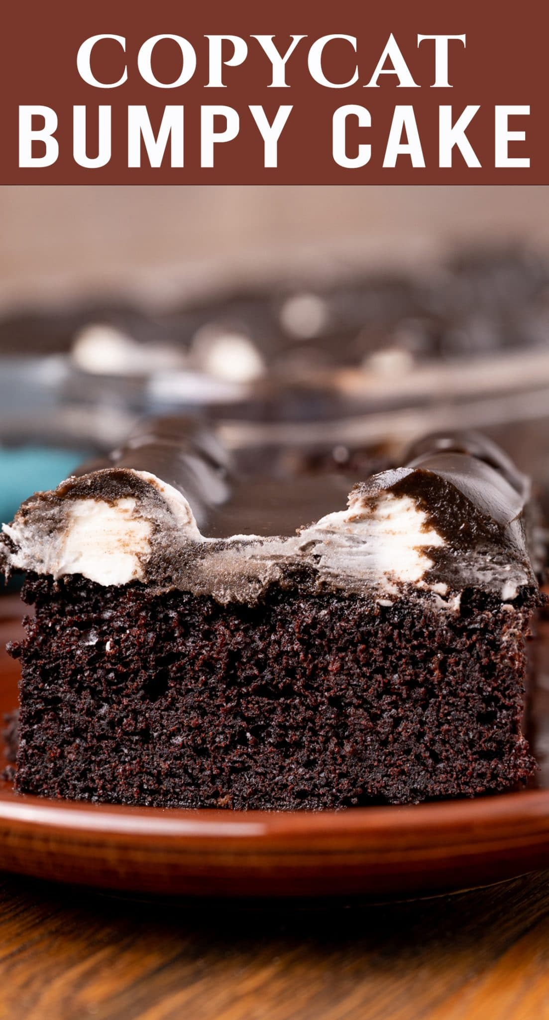 The iconic Michigan dessert: The Bumpy Cake! This fudgy, moist chocolate, buttercream and chocolate fudge frosting is a delicious copycat of the original. via @thebestcakerecipes
