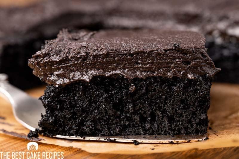 a piece of black cocoa powder cake on a spatula