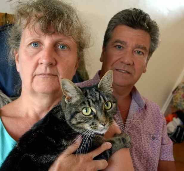 Jo (pictured with husband Gerry and her other cat Tiggy) was devastated after a cattery lost one of her pets