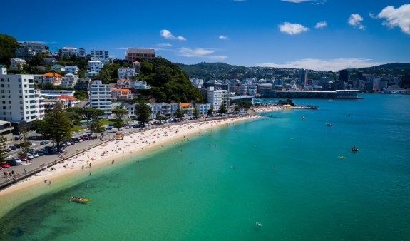 Beach-oriental-bay__ScaleHeightWzcwMF0