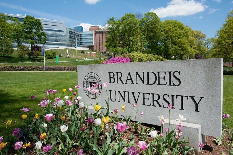 brandeis-sign