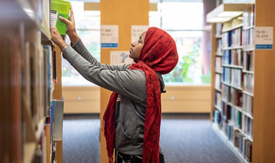 library-south-seattle-college