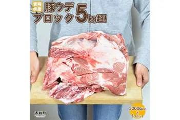 宮崎県産豚ウデブロック5kg超!
