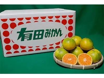 【まごころ手選別】和歌山産有田みかん(極早生) 10kg 大玉(L~3Lサイズ混合)