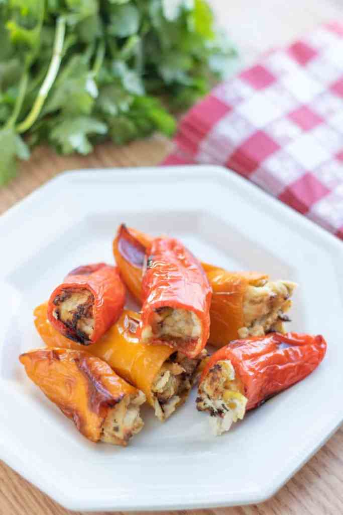 These Easy Low Carb Stuffed Pepper Recipes are loaded with flavor and perfect for keeping in line with your keto or paleo diet!  #keto