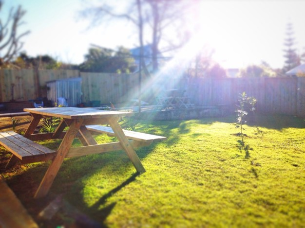 Our Backyard.  Winter sun