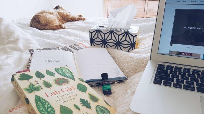 New Zealand's Top Mummy Blogger Parenting Rotorua Travel Blog Family Essential Oils