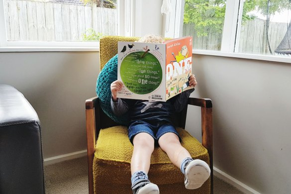 New Zealand's Top Mummy Blogger Parenting Travel Blog Family Book Review