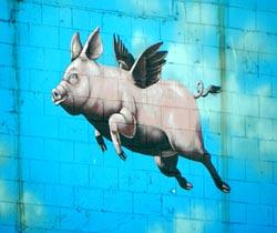 flying-pigWEB