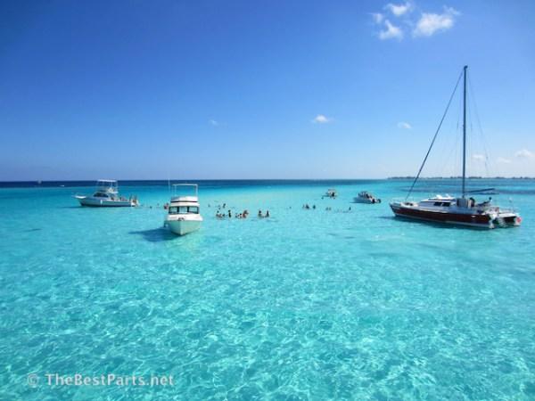Grand Cayman Stingray City2