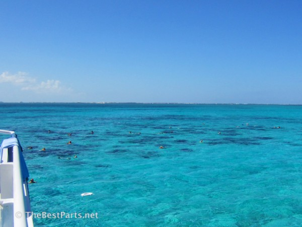 Grand Cayman barrier reef snorkeling
