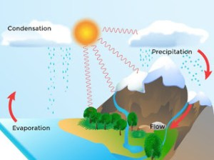 The Water Cycle Experiment