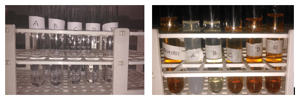Utilization of Betadine (Povidone Iodine) as a Simple Test for the Presence of Mercury in Cosmetics.