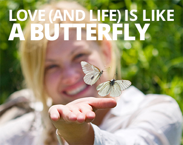 Image result for she is like a butterfly