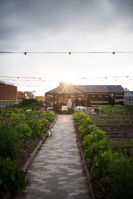 Stedsans Copenhagen Farm to Table Restaurant The Better Places