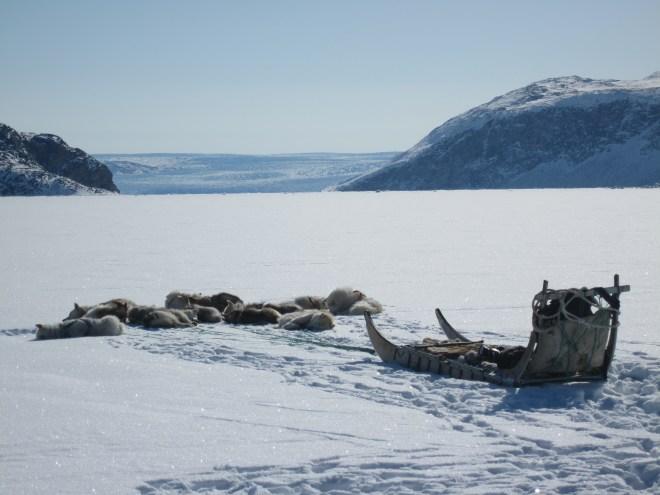 Grönland 4.2010 helena 404.JPG
