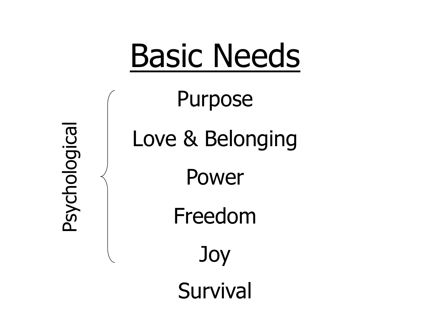 Glasser Basic Needs