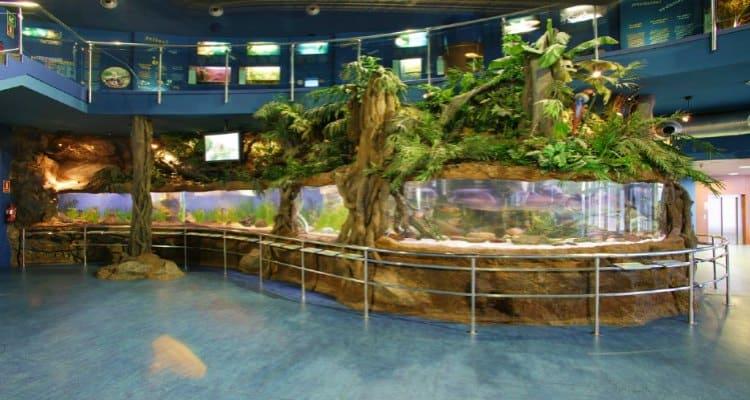 Planeta Aqua at Barcelona Aquarium