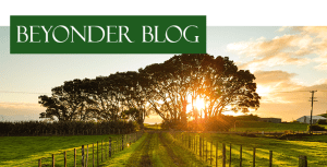 Beyonder Blog