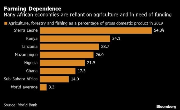 Africa's US$31bn farm funding gap in focus for CDC debt deal