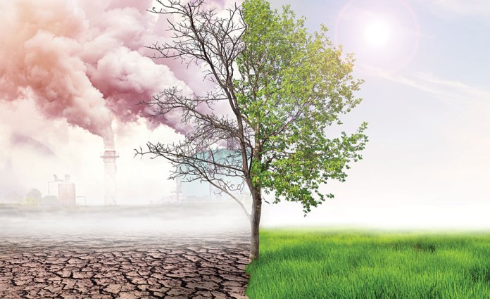 CLIMATE CHANGE REAL: Decarbonization and carbon sinks inevitable
