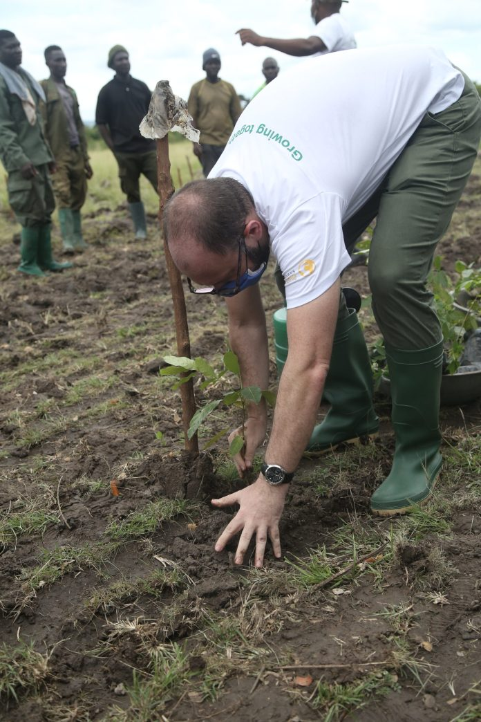 Advans Ghana plants 1,100 trees to reverse impact of climate change