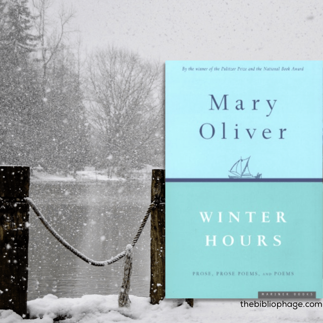 Winter Hours by Mary Oliver