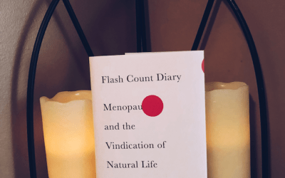 Book Review: Flash Count Diary by Darcey Steinke