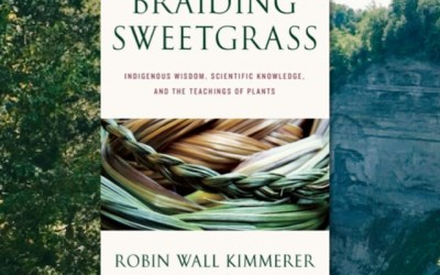 Robin Wall Kimmerer—Braiding Sweetgrass: Indigenous Wisdom, Scientific Knowledge, and the Teachings of Plants (Book Review)