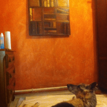 Bruno's studio - Emanating overpowering, nostril-stinging scent of oil paint and dog urine. Imagine sex panther for OAPs.