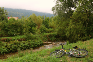 Camping spot #7 One of best so far, methinks: a secluded stream hidden from main road in misty Oyonnax. Finish Chablis in serene bliss - until horde of skunk-smoking teens tear up alongside. Scowl and waft underarms at them until they leave.