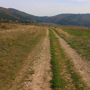 Going off-piste on my way to Koprivshtitsa. Who needs roads?