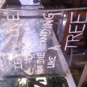 Sign outside the Green Space Cultural Cafe, which touts itself as a 'space away from the city of stones and business'.