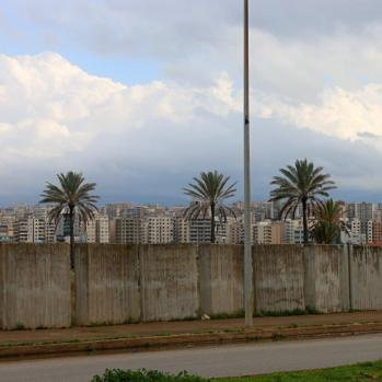 My enduring memory of the city: palms and concrete high rises.