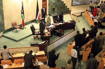 National Legislative Assembly Summons Ministers Over ...