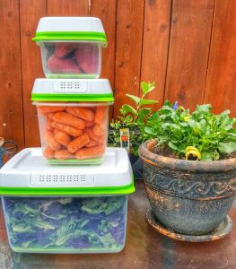 Rubbermaid FreshWorks containers with fresh produce