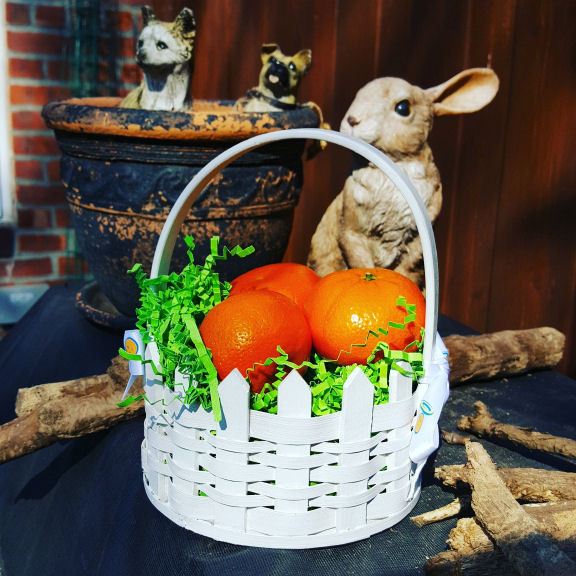 Clementine Easter basket with Wonderful Halos