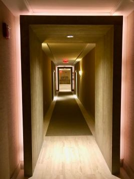 1 Hotel Penthouse Tour - 5