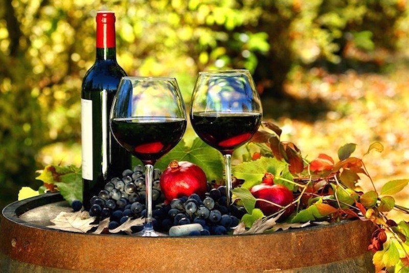 Brisbane wine tours