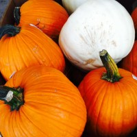 7 Reasons to Eat Pumpkin + a Drink Recipe