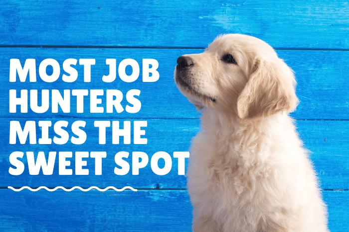 Most Job Hunters Miss the Sweet Spot in the Job Market_