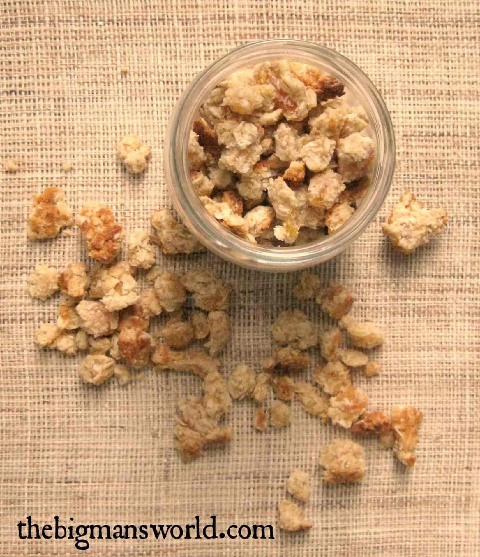 oatmeal_cookie_granola_clusters.jpg2.jpg